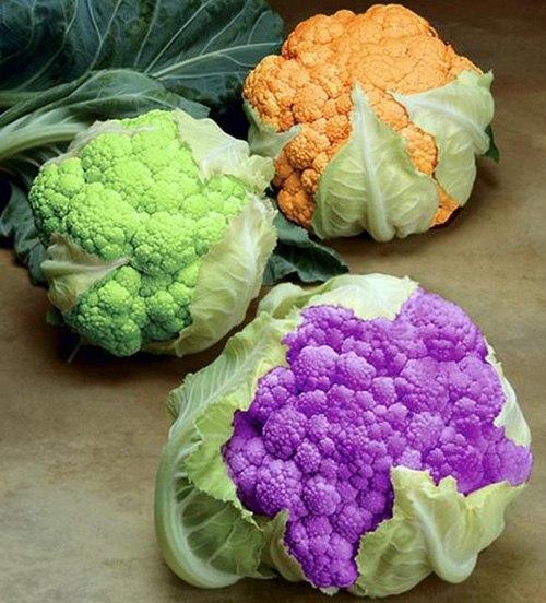 Цветная капуста витамины